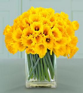 The Enchanted Petal Spring Flower Arrangements Daffodil Bouquet Spring Flowers
