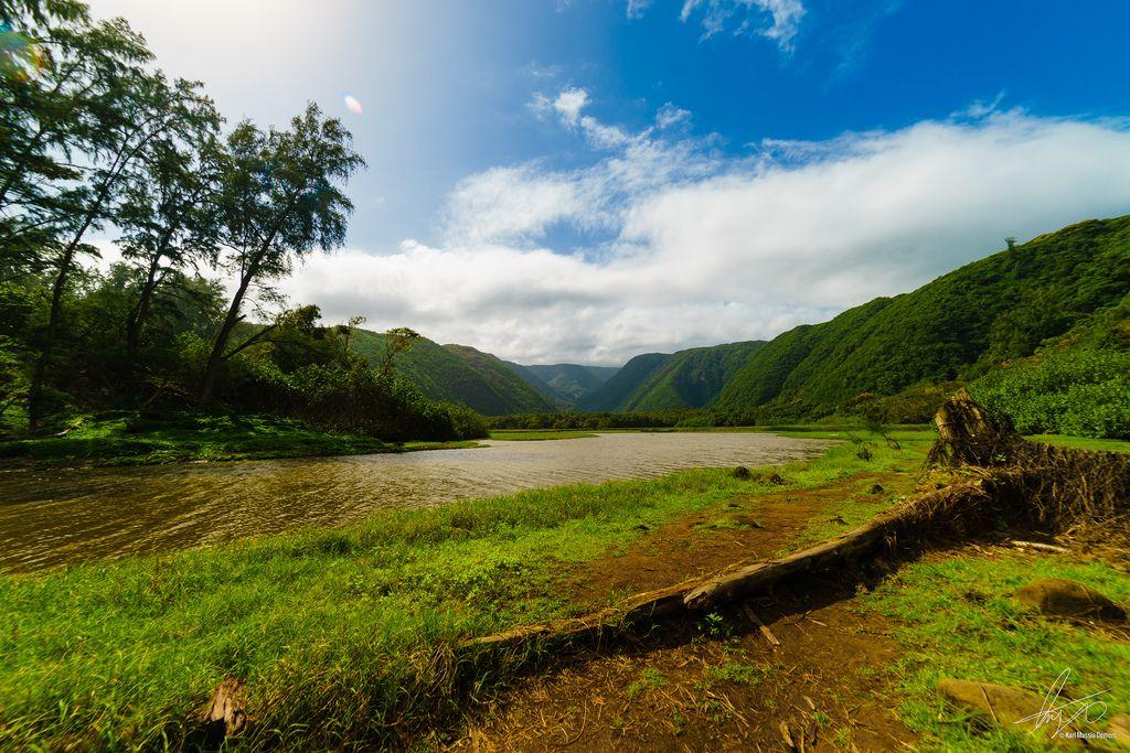 Pololū valley Hawaii [OC] [6000x4000]