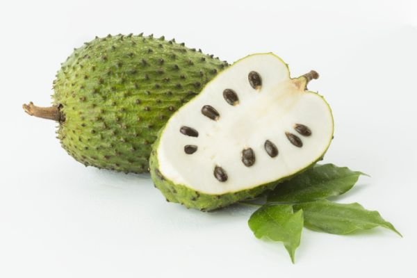 Soursop Fruit Kills Cancer 100-Fold | 紅毛榴蓮 | Soursop