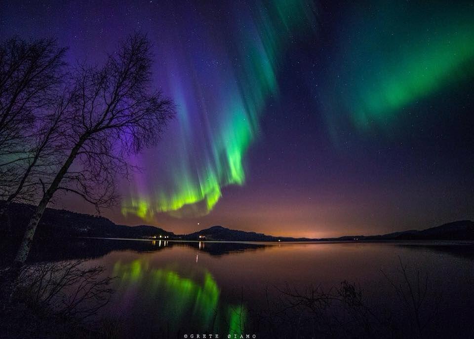 ff738e845 Grete Øiamo | Flotte bilder fra fotokursdeltakere! | Northern lights