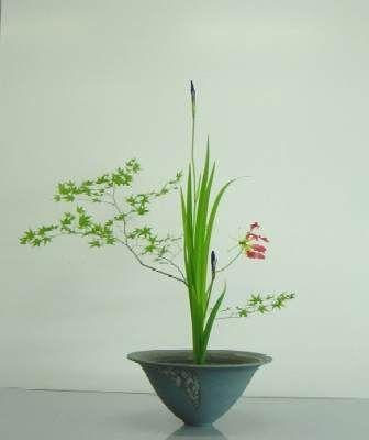 Ikebana – Japanische Blumenarrangements - Bonsai Empire | Ikebana ...