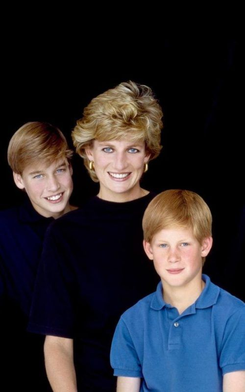 7 Interesting Things Princess Diana Did After Her Divorce - The Celebrity Castle #princessdiana