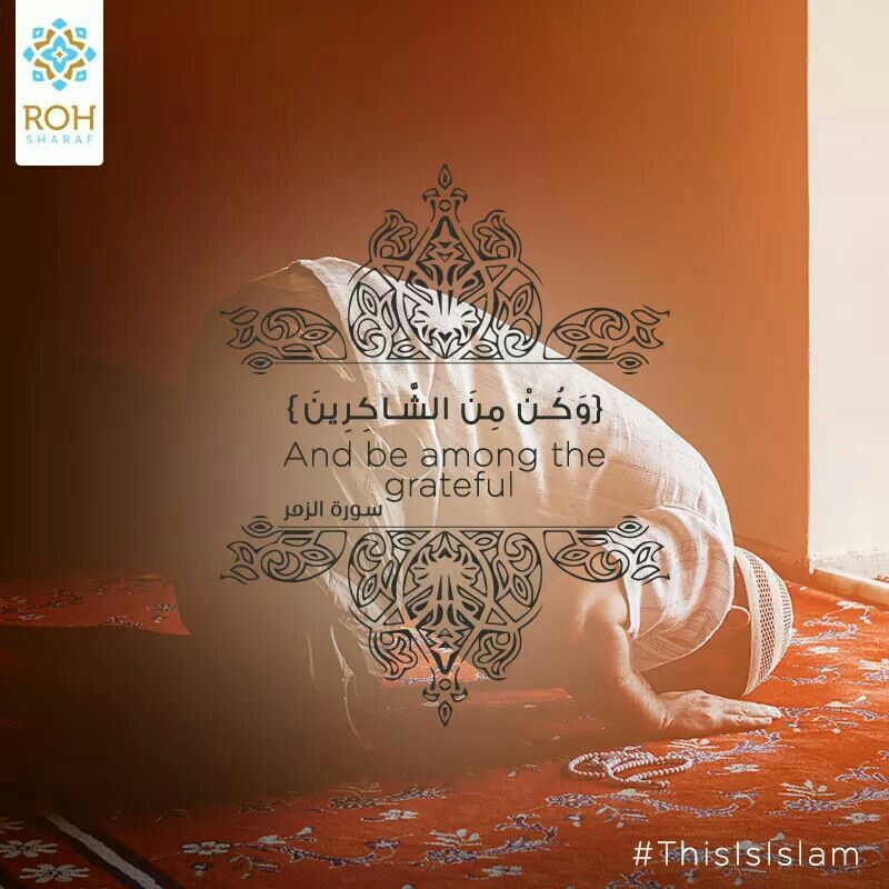 Pin By Shady On Islam Is Quran Quotes Islamic Quotes Islamic Pictures