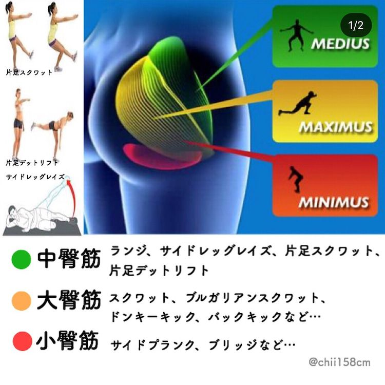 筋 お トレ 尻 臀筋群(お尻の筋肉)を鍛えるメリットは? 尻トレを効果的に行うために知っておきたいこと