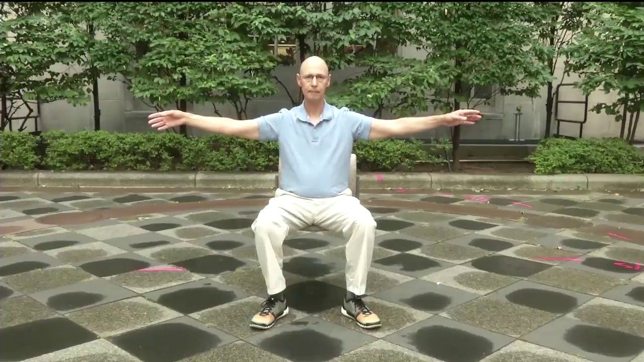 Sitting Tai Chi and Qigong Wellness Exercises (70 Speed