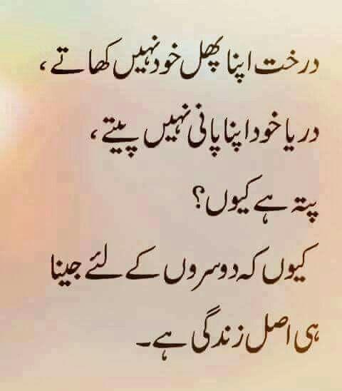 Quotes In Urdu: Pin By Fatima Shakaiba Zakir On Urdu Quotes & Sayings