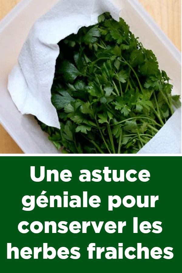 Une astuce g niale pour conserver les herbes fraiches - Cuisiner les girolles fraiches ...