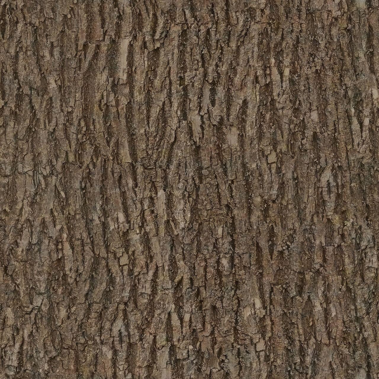 Free Image On Pixabay Bark Wood Tree Seamless