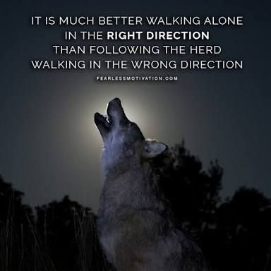 Image result for hurt wolf | For Melina | Wolf quotes ...