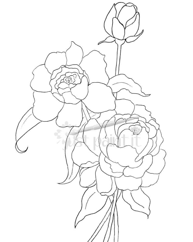 Hydrangea and Peonies Coloring