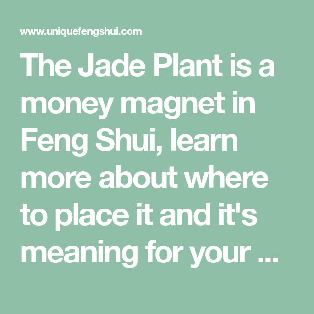 Money Plant Vastu Tips