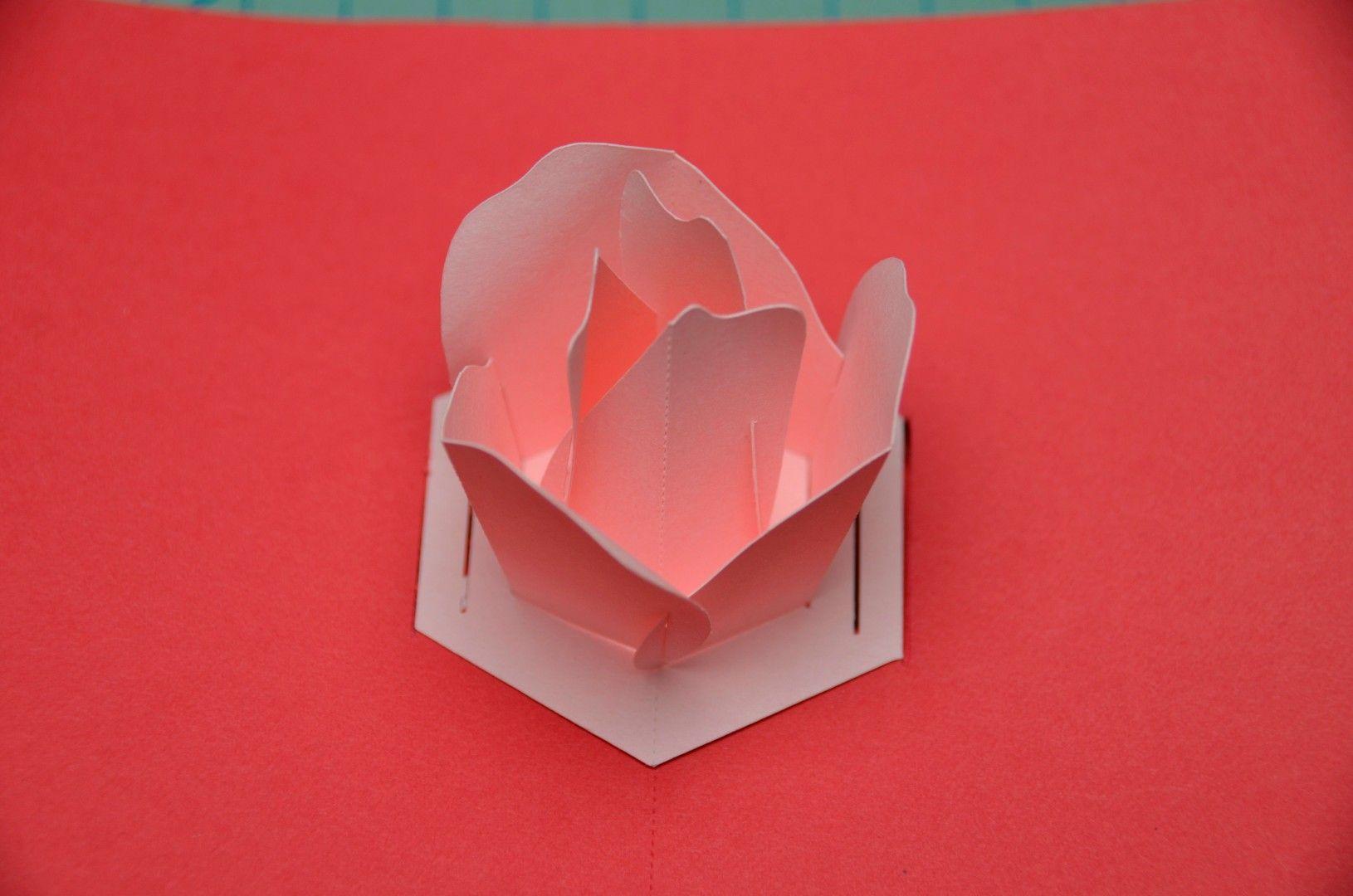 Rose Flower Pop Up Card Tutorial Creative Pop Up Cards Card Tutorial Pop Up Cards Pop Out Cards