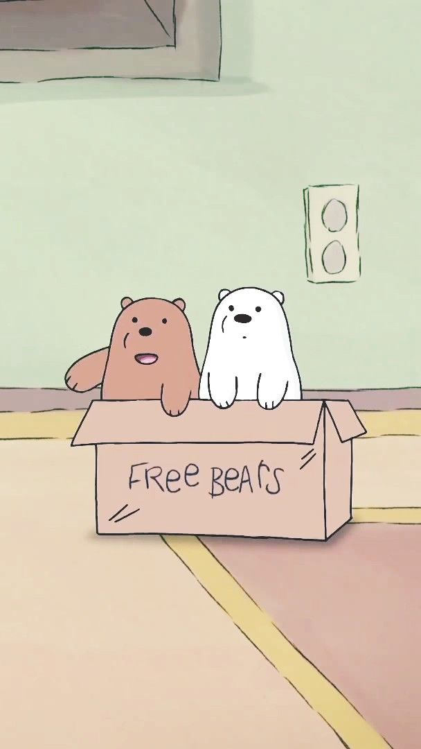 Free bears images 95