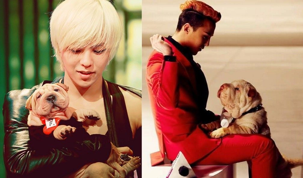 11 Idols Who Have Proven That They Will Always Be There For Their Best Friend G Dragon Best Friends Korean Idol
