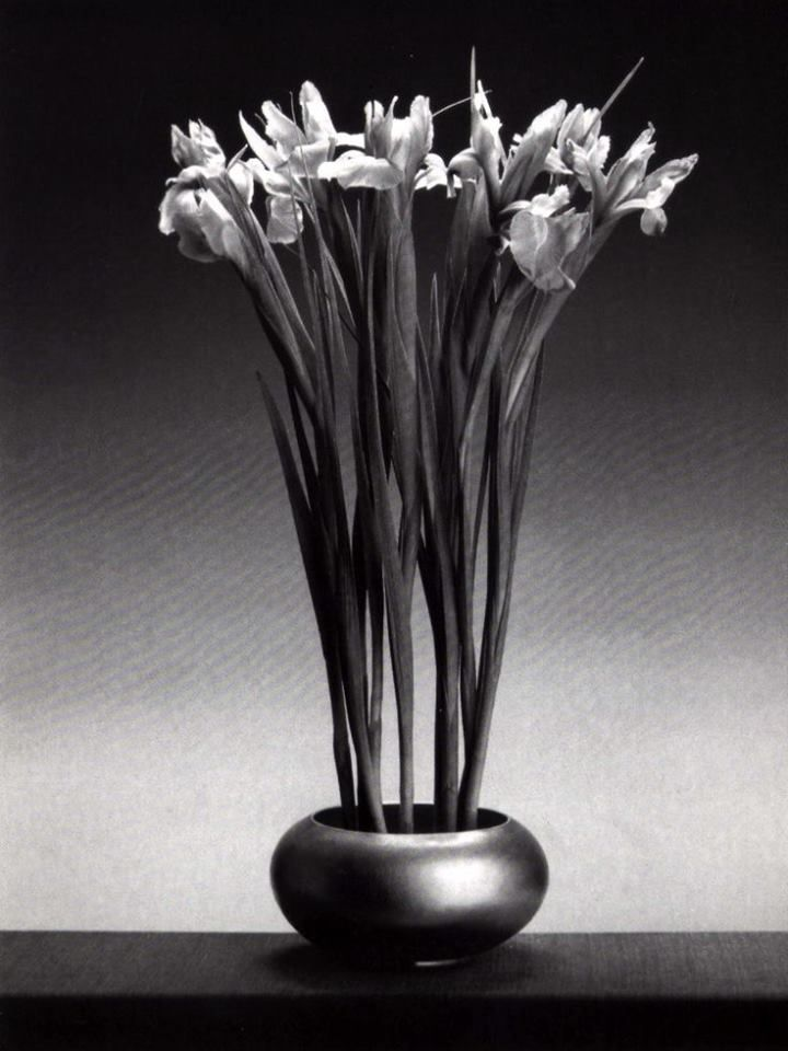 Robert Mapplethorpe ~ #BW #Photography