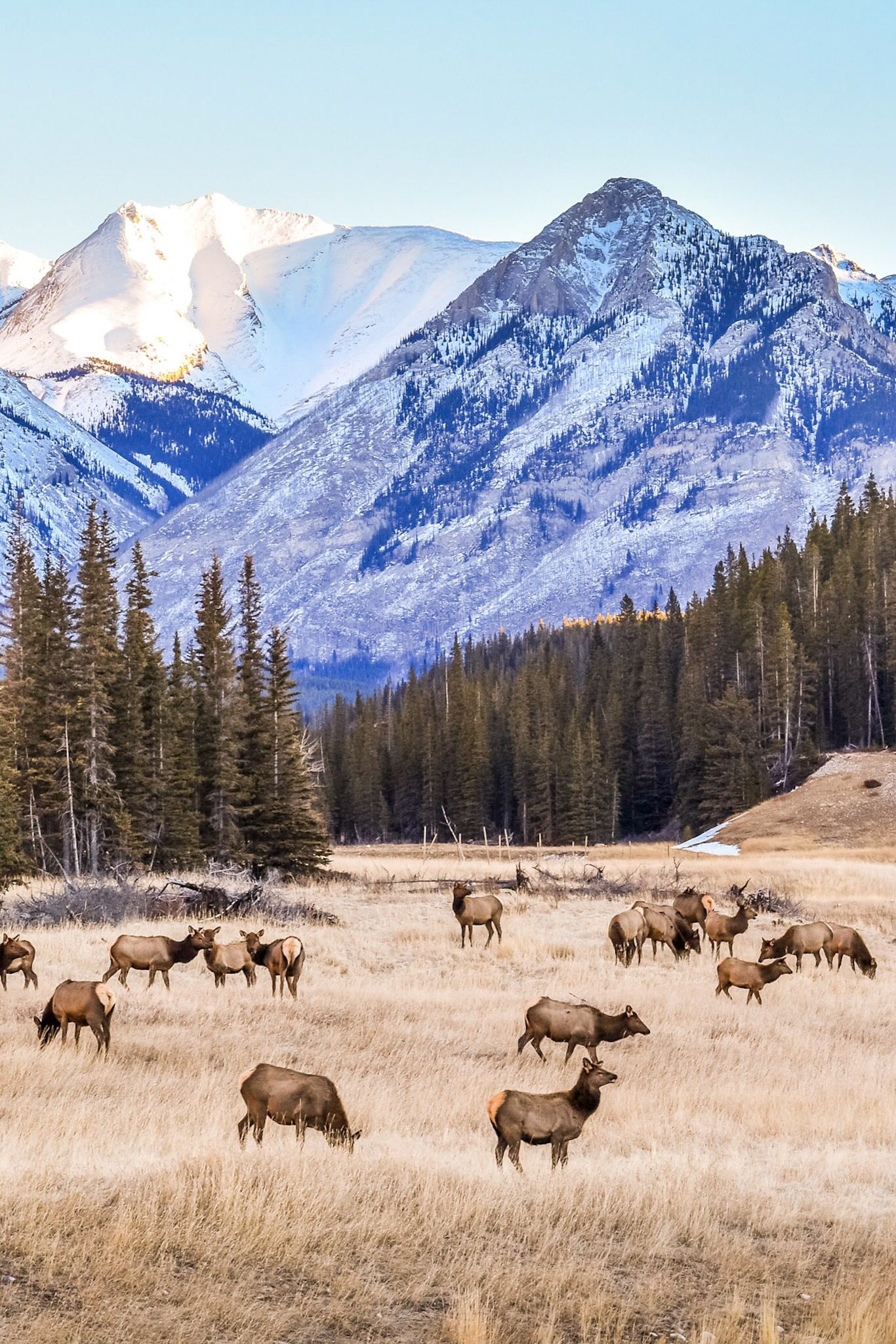 The Canadian Rockies Photography Guide Scenery Pictures Scenic Nature Travel