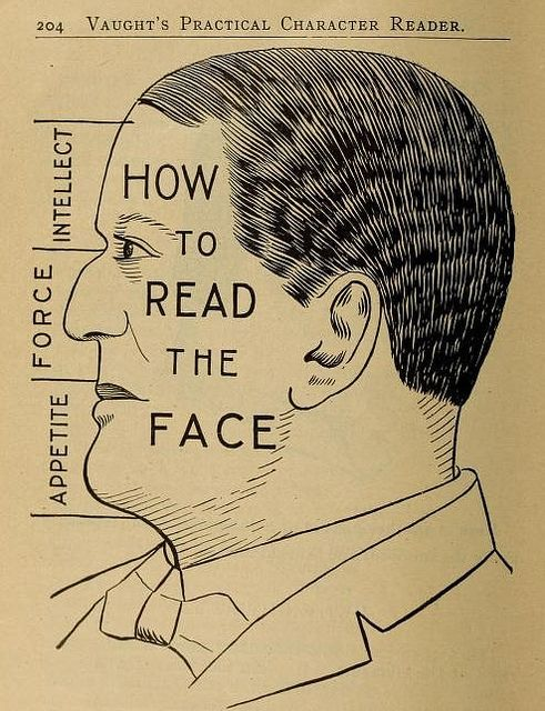 old drawing of head showing phrenology - Google Search