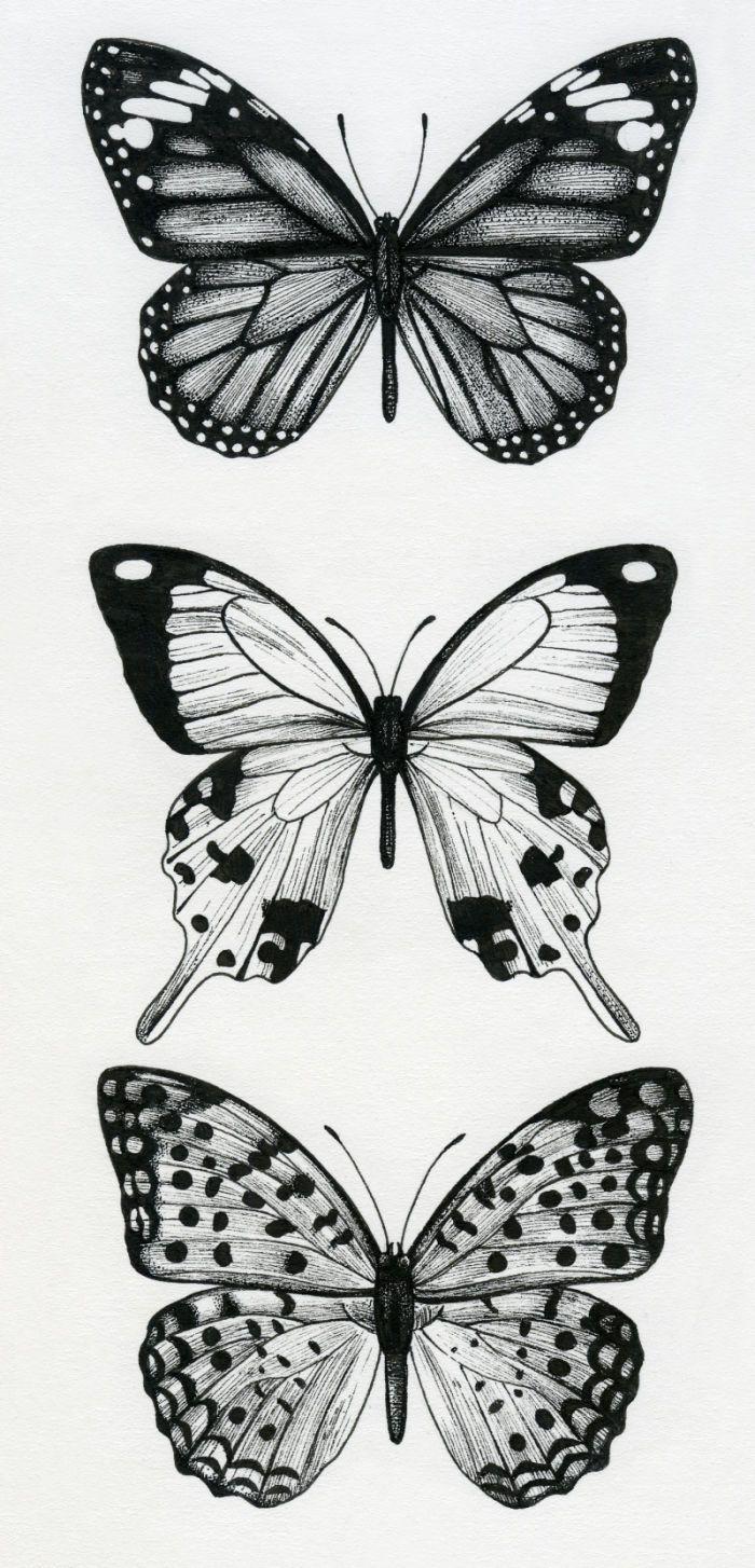 Lisa Alderson LA Butterflies Tatuagem de borboleta