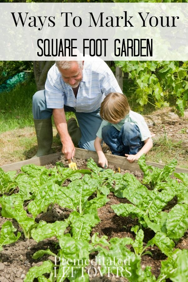 Ways to Mark Your Square Foot Garden | Gardens, Raised beds and ...