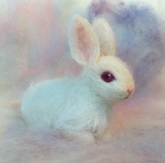 A pretty little white bunny with pink eyes. The baby bunny ...