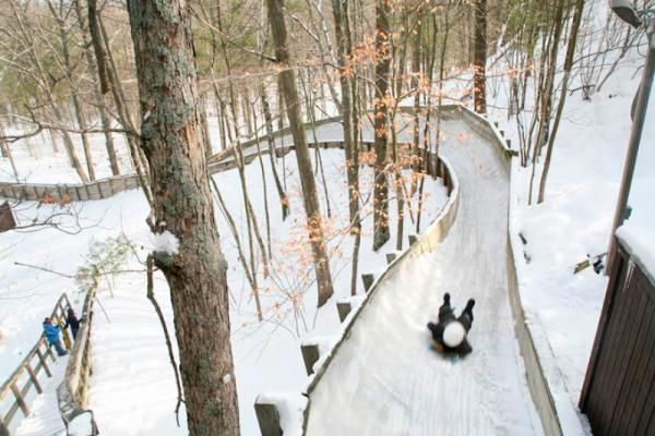 7 Hotspots For A Michigan Winter Adventure Michigan Travel Michigan Vacations Michigan Fun