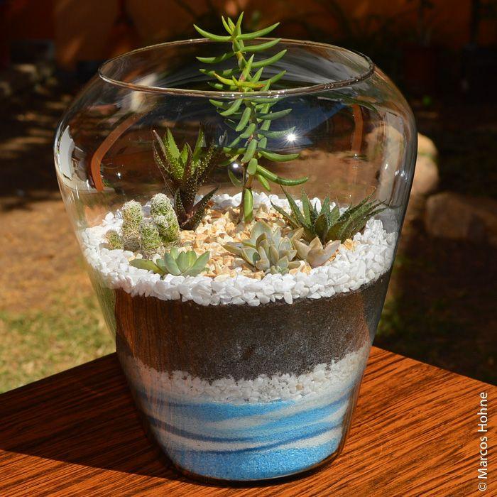 terrario miniatura - Pesquisa Google
