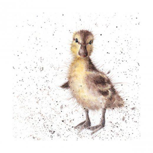 Wrendale Designs Coj/ín Una Waddle Y Un Quack Pato