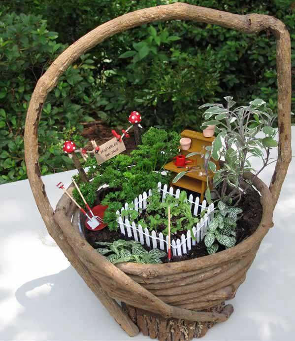 Make A Miniature Kitchen Garden Great Pictures