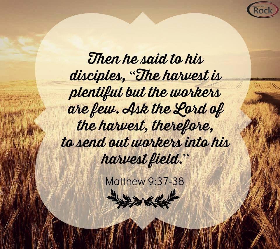 Matthew 9 37 38 the harvest