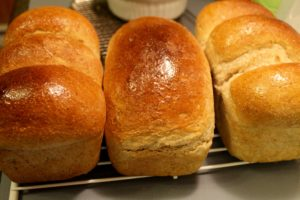 Nl Recipe For Homemade Bread