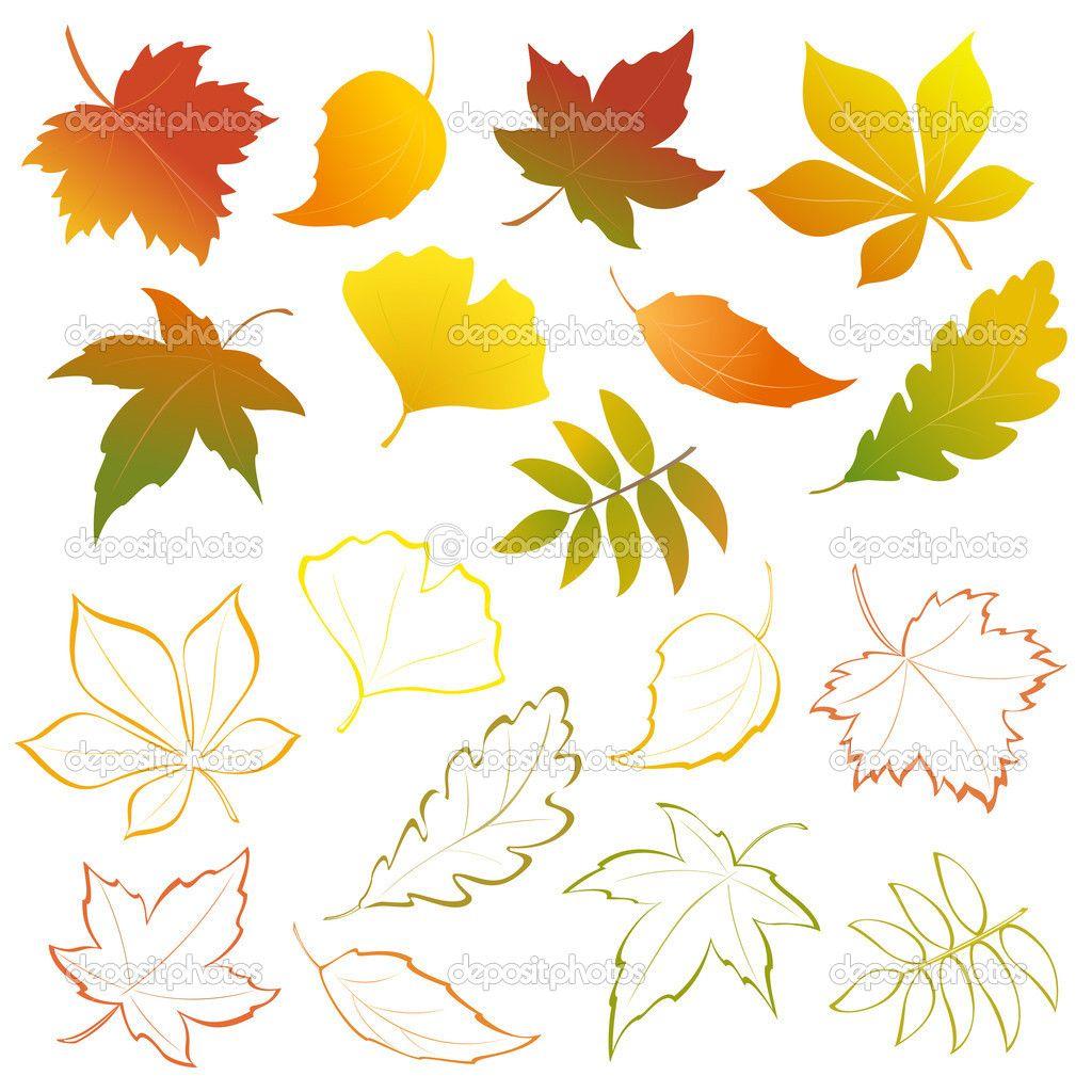 düşen yaprakları seti — Stok İllüstrasyon #30418829   arboles trees ...