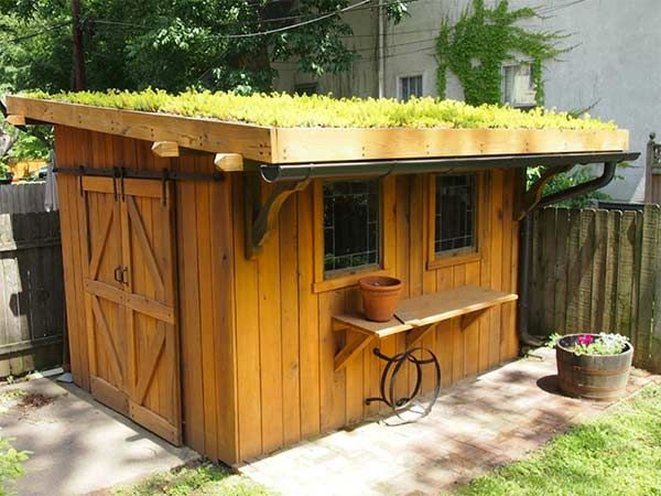 This Shed Maximizes A Tiny Backyard With A Living Roof Full Of