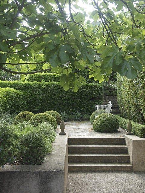 vicki archer, provence haie jardin hauteur escalier haies buis ...