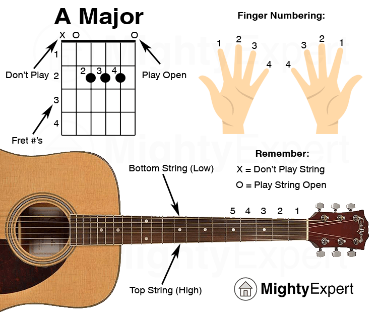 Easy Guitar Songs A Major Chord Guide Graphic Mightyexpert Basic Guitar Lessons Easy Guitar Songs Guitar Songs For Beginners