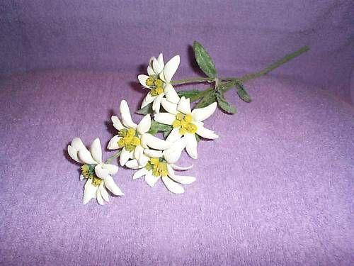 Artificial silk flower stalk of 5 edelweiss sound of music flower artificial silk flower stalk of 5 edelweiss sound of music flower new w tag ebay mightylinksfo