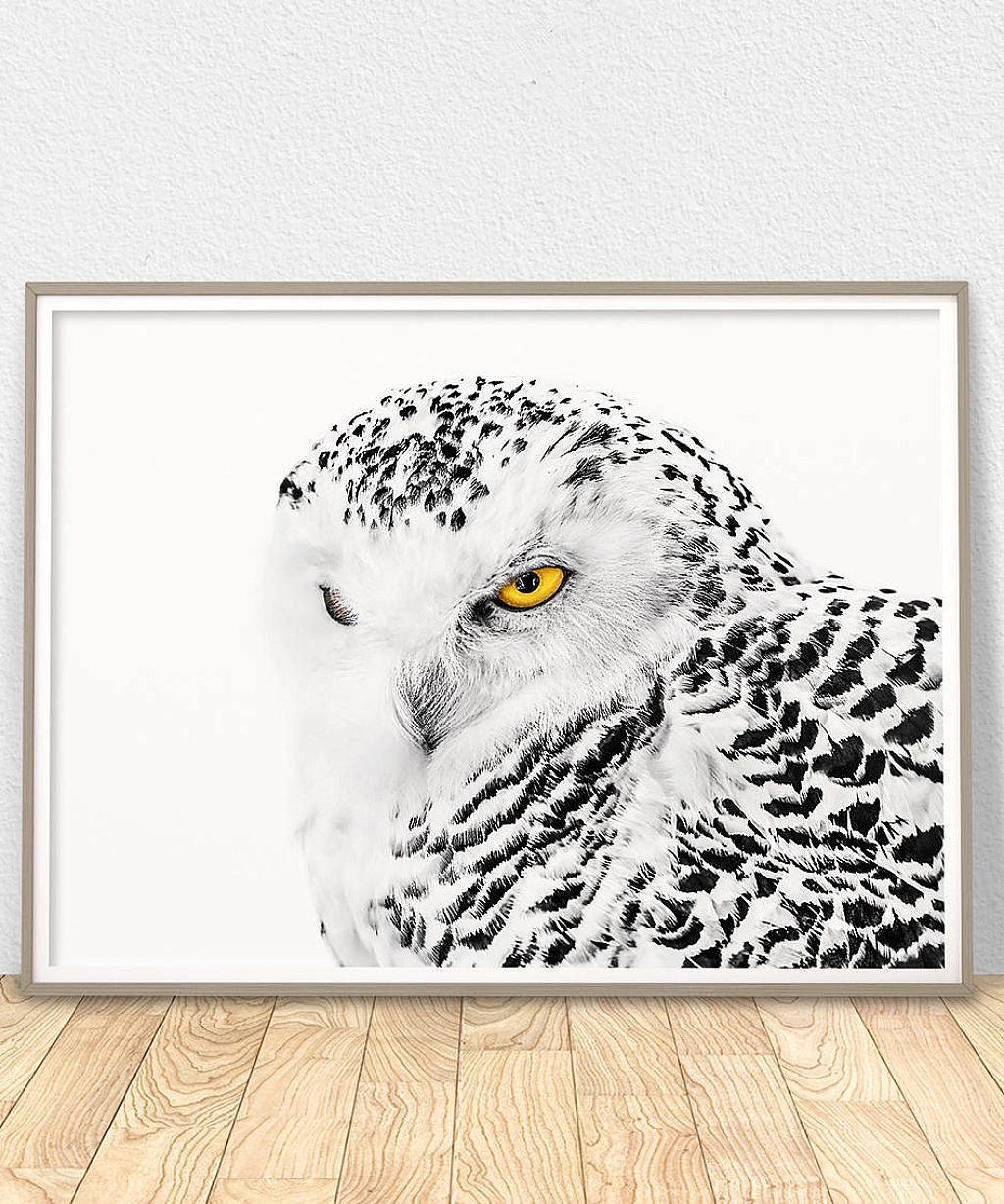 White Owl Poster Printable Wall Art Owl Decor Snowy Owl Etsy Owl Nursery Art Owl Wall Art Printable Owl Wall Art