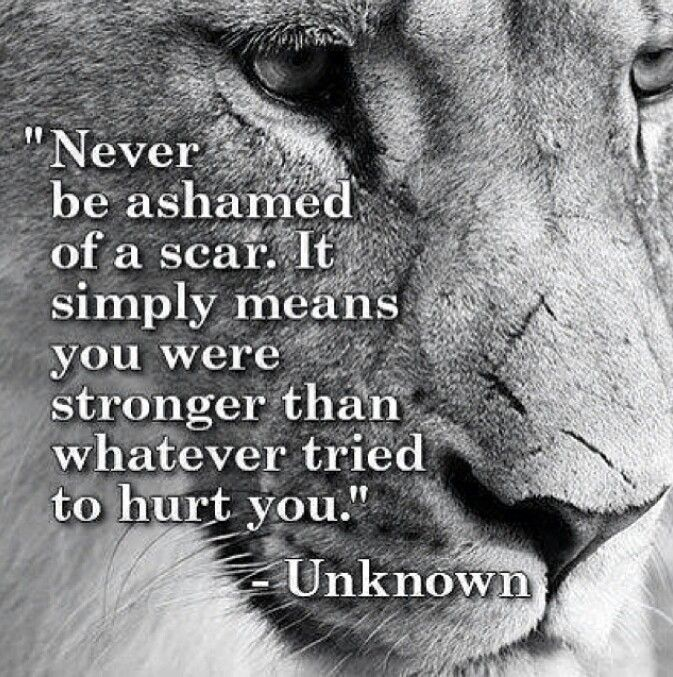 Quotes About Strength And Courage Strength #courage #champion Quotes  Inspiration  Pinterest .