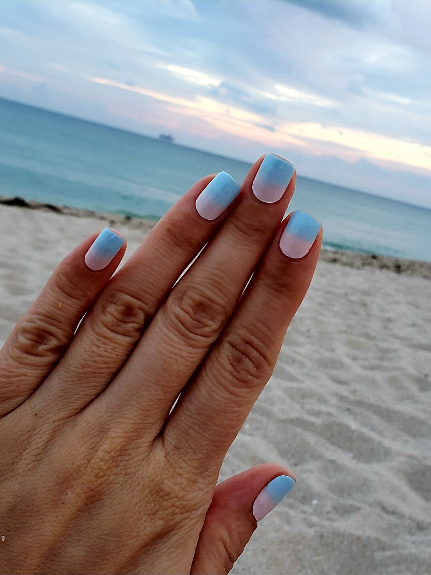 Seaside Dreams Is Purrfect For The Beach Any Time Of The Year