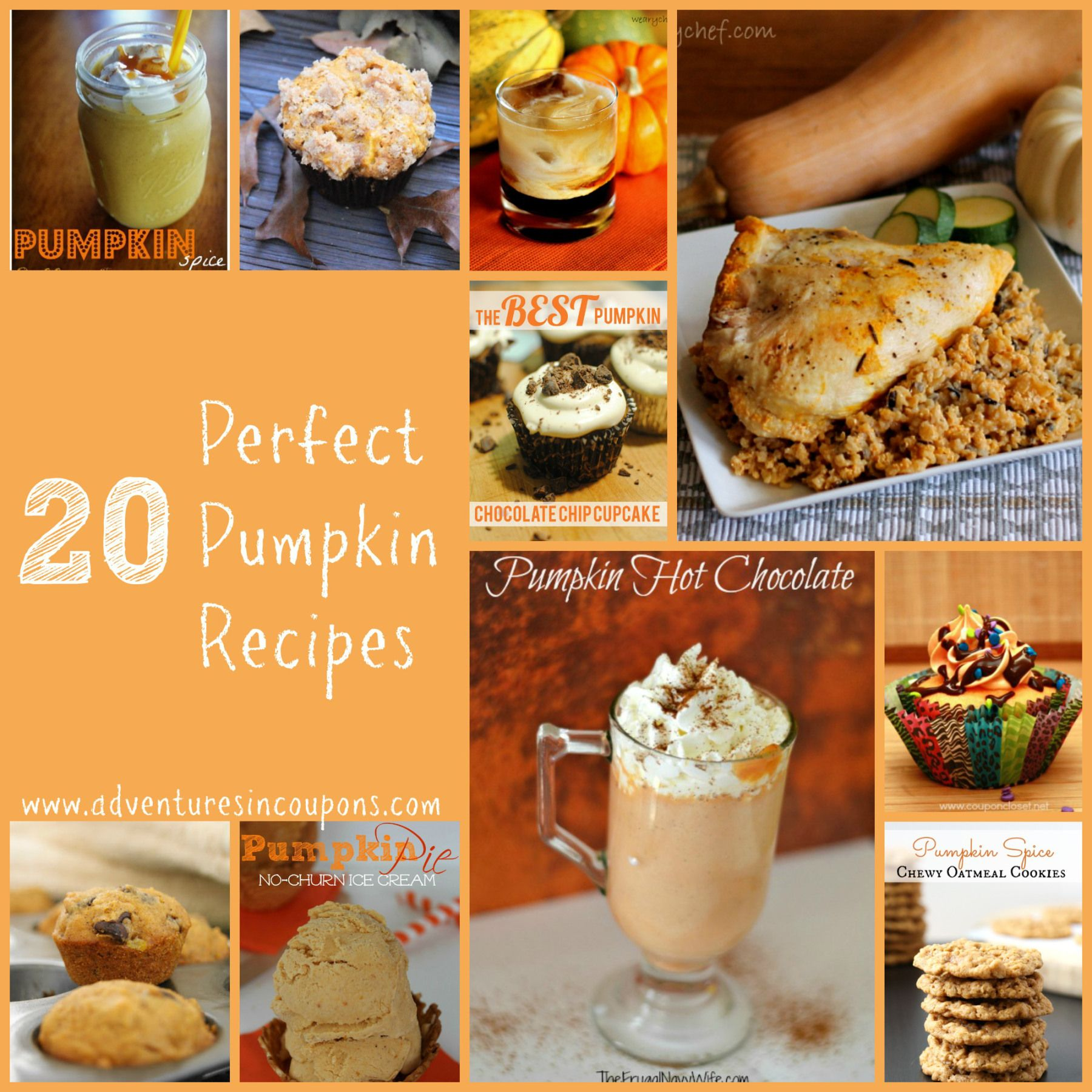 Pumpkin isn't just for pie and these recipes prove it!  Check out these 20 Perfect Pumpkin Recipes! They're perfect for any meal of the day!
