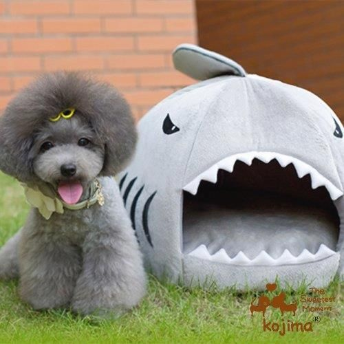 Shark Cave Bed for your small dog       Buy it now >>>>>   http://bit.ly/2aKSPtg