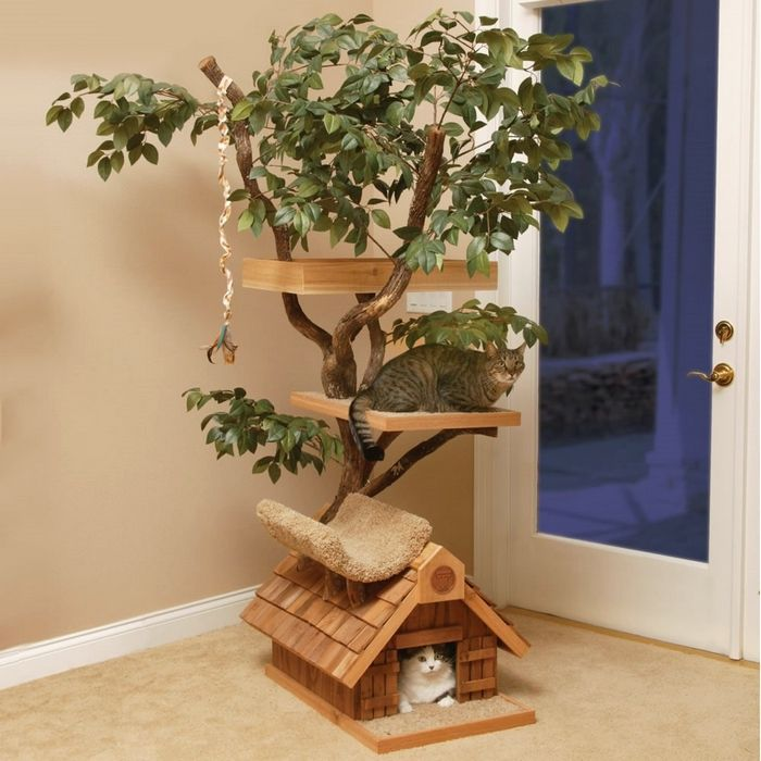 If You Have Pets At Your Home Then We Have Something For Them Too You Can Surprise Your Pet By Building A Beautif Cat Tree House Cat Tree Designs Diy Cat