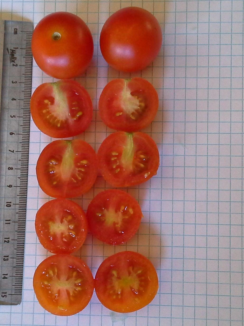Tomato Inventory Tomato Seeds Vegetables