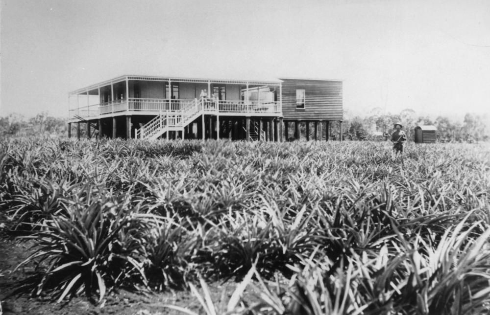 Residence of Bill Zerner situated on his farm at Cleveland