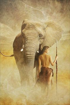 Nude and elephant in africa photos 827