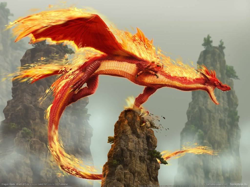 Fire Elemental Dragon | Mythical Creatures | Dragon pictures, Dragon