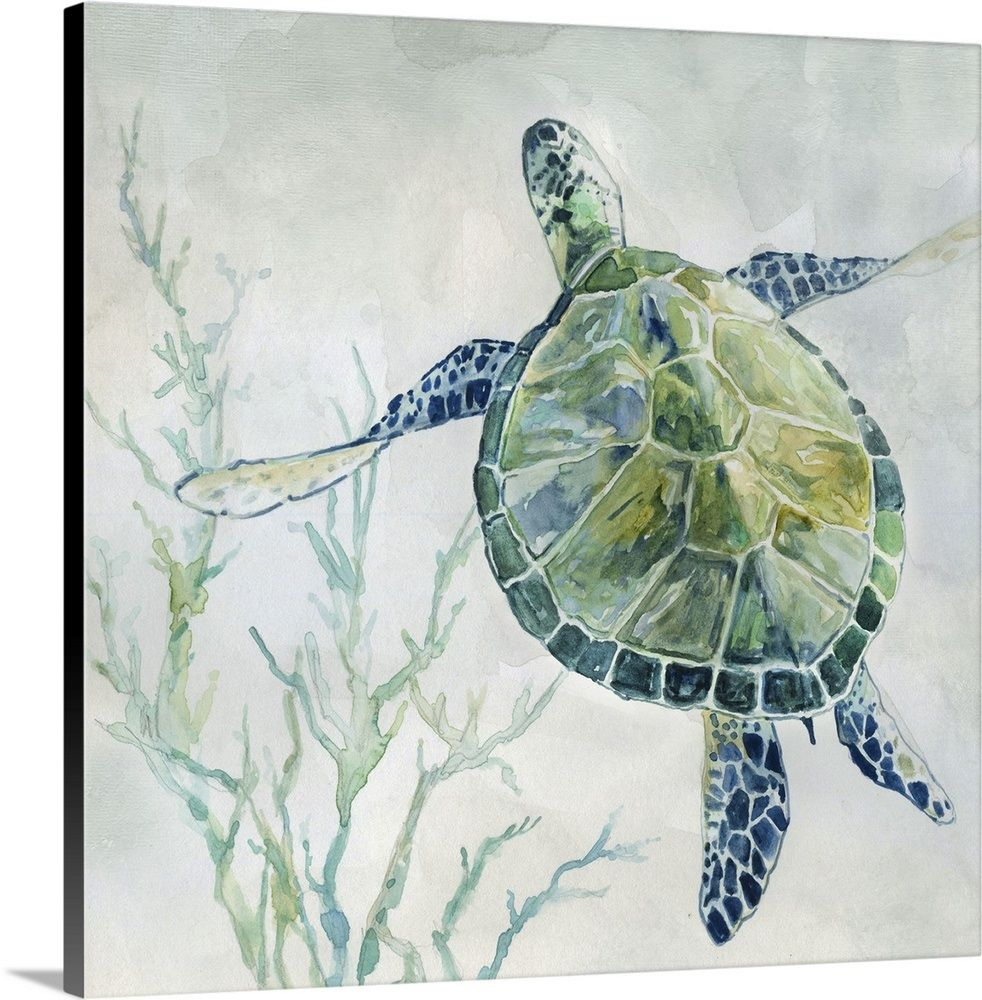 Seaglass Turtle Ii Watercolor Sea Canvas Art Art
