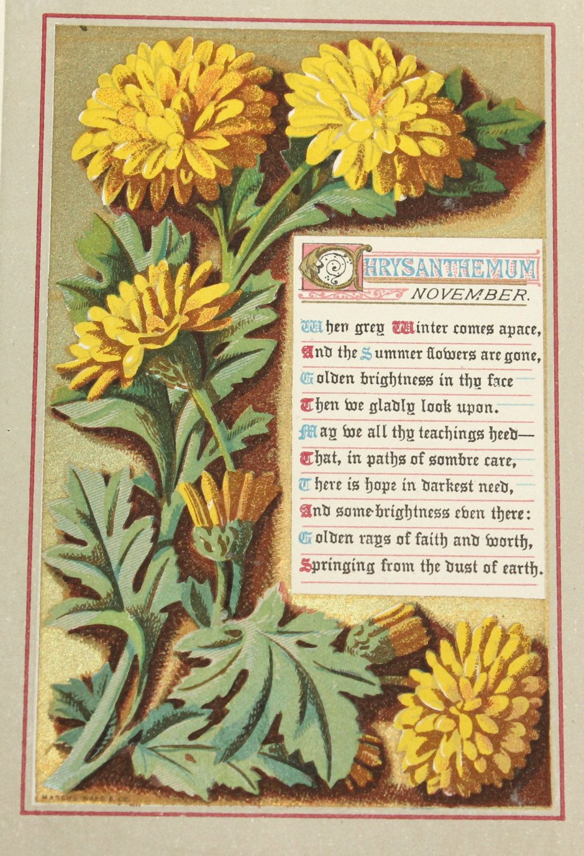 GENUINE 1873 Antique Chrysanthemum November Plate