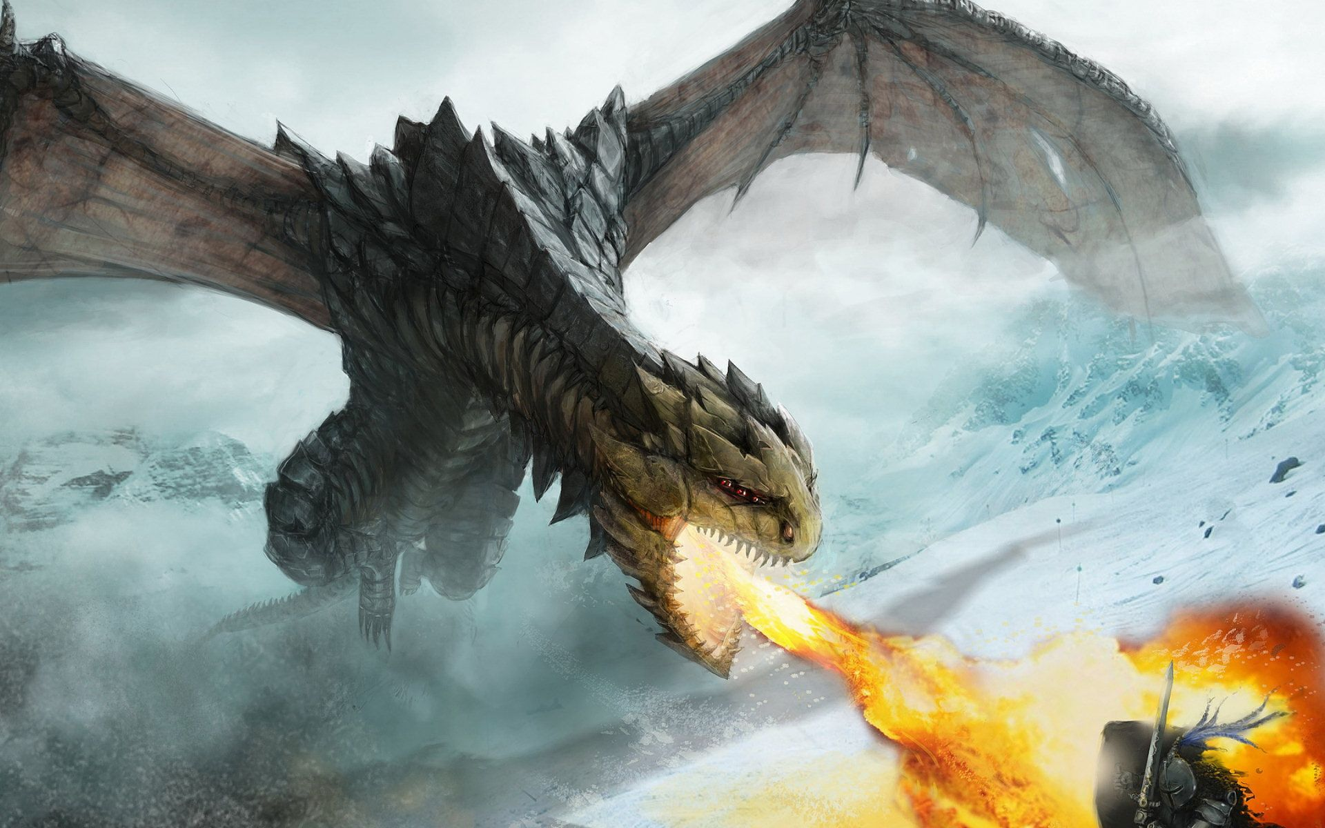 flying fantasy dragons wallpapers hd toobjects