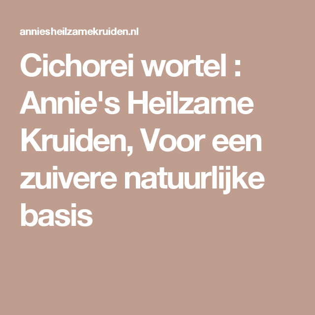Cichorei wortel : Annie's Heilzame Kruiden, Voor een zuivere natuurlijke basis