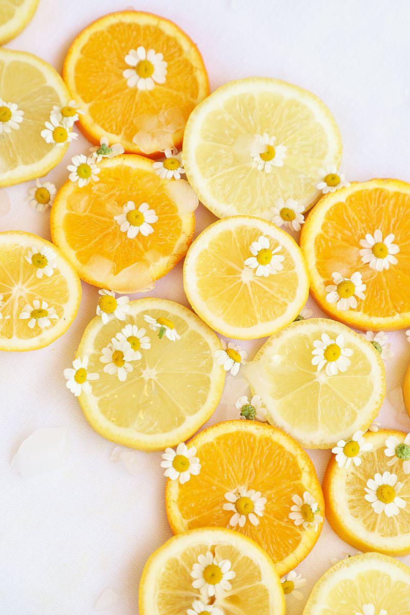 Meyer Lemon Drop Cocktail Recipe - A Bubbly Life